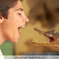 Гра «крокодил», правила, цікаві слова