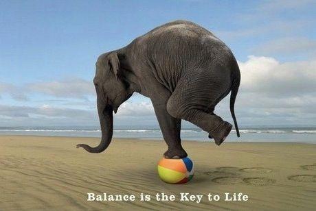 Колесо життєвого балансу - створюємо гармонію